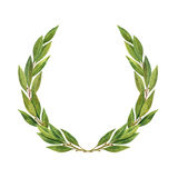 Watercolor Bay leaf wreath isolated on white background. Stock Images