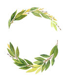 Watercolor Bay leaf wreath isolated on white background. Hand drawn organic products for design of healthy food, kitchen, invitations, greeting cards, quotes vector illustration