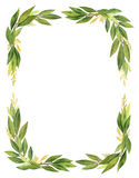 Watercolor Bay leaf wreath isolated on white background. stock illustration