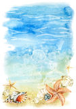 Watercolor beach illustration with sea shells and starfishes Royalty Free Stock Images