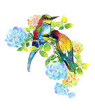 Watercolor beautiful birds and delicate flowers Stock Photos