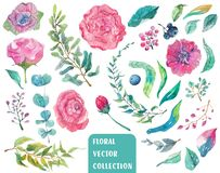 Watercolor beautiful floral collection Royalty Free Stock Photos