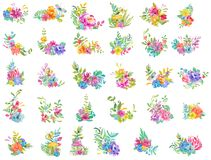 Watercolor beautiful floral design. Bright floral compositions o vector illustration