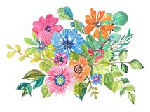 Watercolor beautiful floral design Stock Image