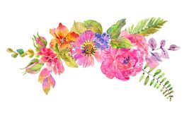 Watercolor beautiful floral design. Hand painted floral composition over white background. different kind of branches, flowers and leaves Stock Photos