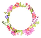 Watercolor beautiful floral design. Hand painted floral composition over white background. different kind of branches, flowers and leaves Royalty Free Stock Photo