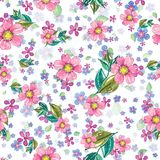 Watercolor beautiful floral design, seamless pattern Stock Photos