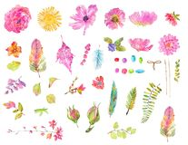 Watercolor beautiful floral design set. Hand painted collection over white background. different kind of branches, flowers,  leaves, feathers and beads Royalty Free Stock Images