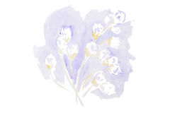 Watercolor beautiful flowers stock illustration