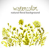 Watercolor beautiful green background Royalty Free Stock Photography