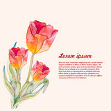 Watercolor beautiful. vector Royalty Free Stock Photography