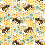 Watercolor bees, flowers and honeycombs seamless pattern Stock Images