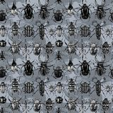 Watercolor beetles seamless pattern. Royalty Free Stock Images