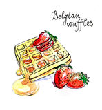 Watercolor Belgian waffles Royalty Free Stock Images