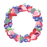 Watercolor berries wreath Royalty Free Stock Photos