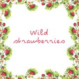 Wild strawberry frame vector illustration