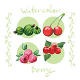 Watercolor berry set. Royalty Free Stock Images