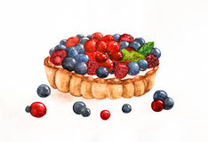 Watercolor berry tart Stock Image