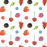 Watercolor berry in vintage style Royalty Free Stock Photography