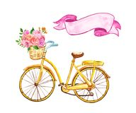 Yellow hand painted bicycle with basket and pink flowers, isolated on white background. Watercolor Summer festive illustration. Watercolor bicycle illustration stock illustration