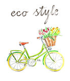 Watercolor bike. Watercolor hand drawn bicycle - Illustration Stock Photos