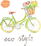 Watercolor bike. Watercolor hand drawn bicycle - vector Illustration Royalty Free Stock Photo