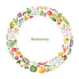 Watercolor biodiversity conceptual illustration of healthy foods. Collection Fruit, vegetables, animals, fish and birds, arranged in a circle. Space for your Stock Photography