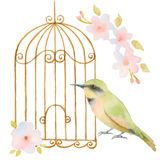 Watercolor bird, cage and flowers Stock Images