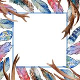 Watercolor bird feather frame from wing. Stock Photos