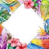 Watercolor bird feather frame from wing. Stock Photography
