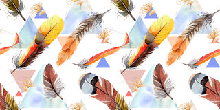 Watercolor bird feather pattern from wing. Stock Photo
