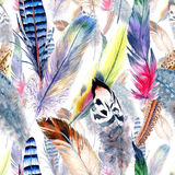 Watercolor bird feather pattern from wing. Aquarelle feather for background, texture, wrapper pattern, frame or border vector illustration