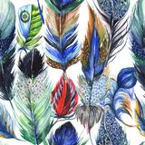Watercolor bird feather pattern from wing. Royalty Free Stock Image