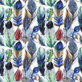 Watercolor bird feather pattern from wing. Royalty Free Stock Photography