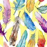 Watercolor bird feather pattern from wing. Royalty Free Stock Photos