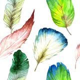 Watercolor bird feather from wing. Seamless background pattern. Fabric wallpaper print texture. Aquarelle feather for background, texture, wrapper pattern royalty free illustration