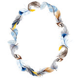 Watercolor bird feather from wing wreath. Stock Photography