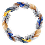 Watercolor bird feather from wing wreath. Royalty Free Stock Photos