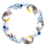 Watercolor bird feather from wing wreath. Royalty Free Stock Images