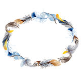 Watercolor bird feather from wing wreath. Stock Images