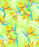 Watercolor bird of paradise tropical seamless pattern. Amazing neon tropical pattern with watercolor flowers and leaves. seamless repeating design for fashion Stock Photos