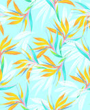 Watercolor bird of paradise tropical seamless pattern. Beautiful watercolor seamless tropical pattern with subtle colors. Heliconia, palms and bird of paradise Royalty Free Stock Photo