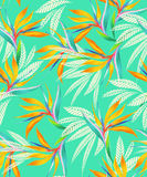 Watercolor bird of paradise tropical seamless pattern. Seamless turqouise floral pattern with watercolor flowers and silhouettes. Trendy coloring and elelements Royalty Free Stock Photo