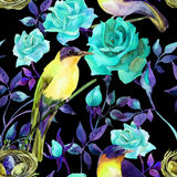 Watercolor birds on the blue roses Stock Images