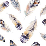 Watercolor birds feathers pattern. Seamless Royalty Free Stock Image