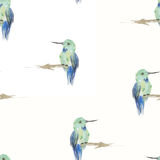 Watercolor birds seamless pattern. Royalty Free Stock Photography