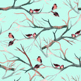 Watercolor birds on the tree branches