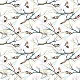 Watercolor birds on the tree branches Stock Photography
