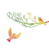 Watercolor birds at tree silhouettes Royalty Free Stock Photo