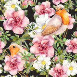 Watercolor birds and watercolor flowers . Seamless floral pattern. Stock Photo
